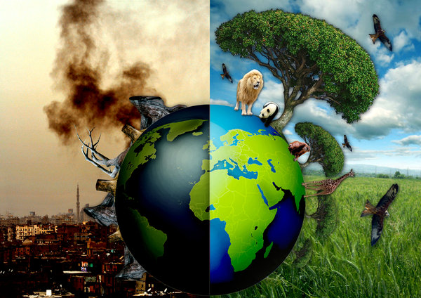 an overview of the issues of overpopulation deforestation and waste in the world