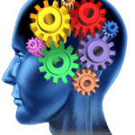 Four Critical Cognitive Skills