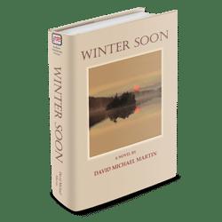 WinterSoon3D250x250
