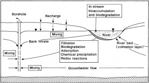 HISCOCK and GRISCHEK 2002 Processes Affecting Water Quality During BF
