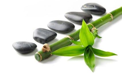 bamboo-rocks