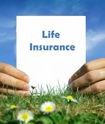 Term Life Insurance Instant Quote Stunning Compare Instant Online Quotes For Term Life Insurance Today