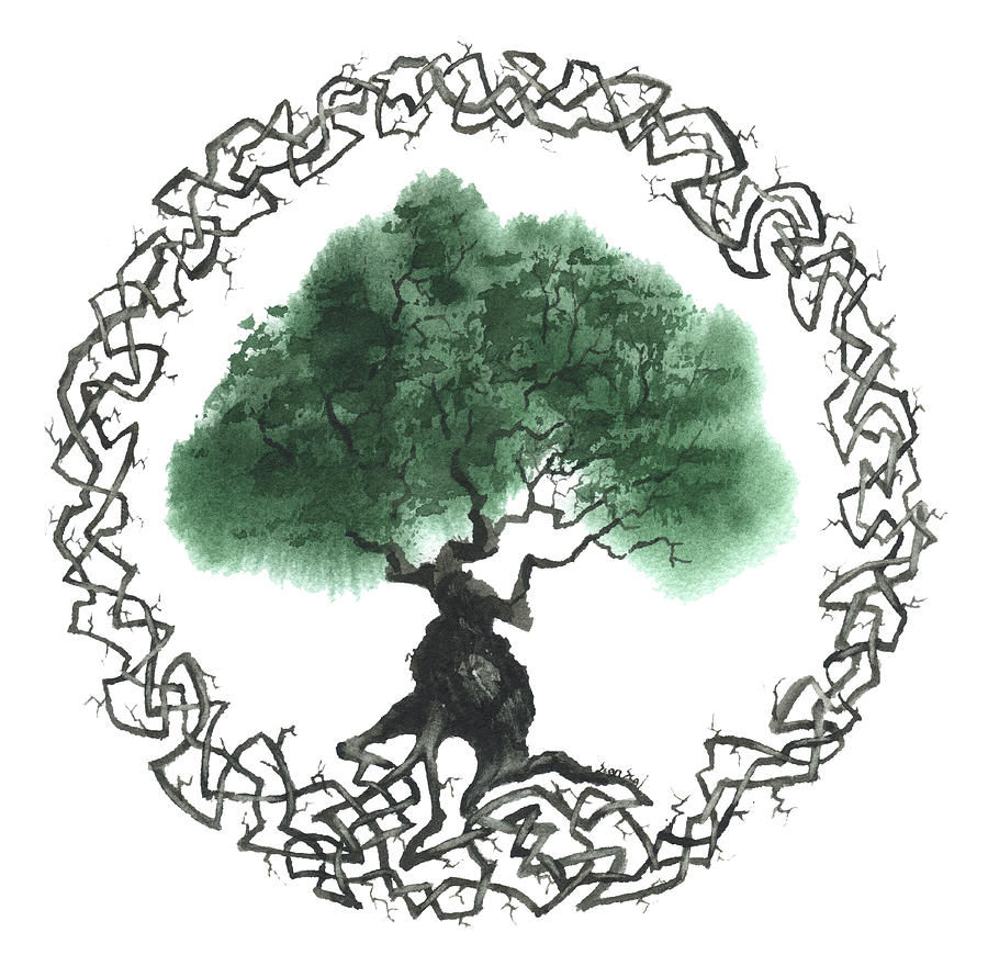 Celtic Tree Of Life Symbol Robert Jr Graham